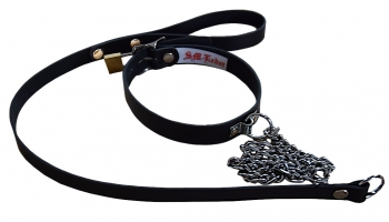 BDSM Collar with integrated dog leash