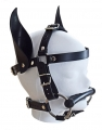 head harness horse